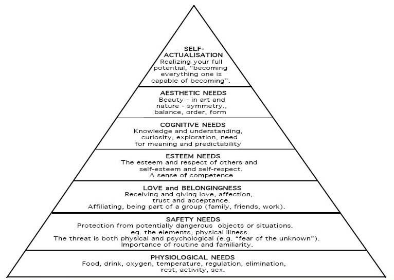 Blog Reflection 6: Ambiguity and constructivism « jmellender
